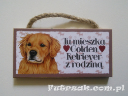 Tabliczka z magnesem-Golden Retriever